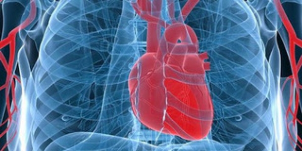 Mengetahui Kemampuan Kinerja Jantung Yang Tanpa Berhenti